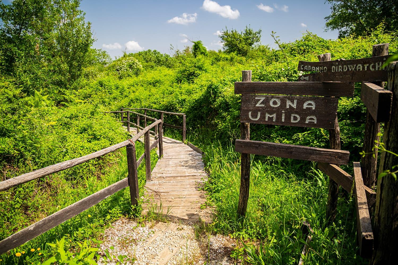 ZonaUmida_Mercareccia_Cava001